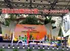 重庆第三十七中学校园文化艺术展演定制的文化衫